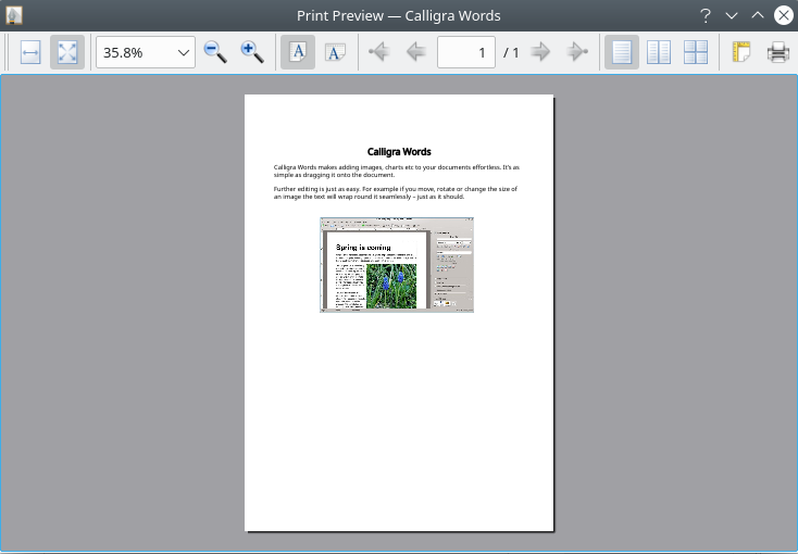 Print Preview dialog shows all pages